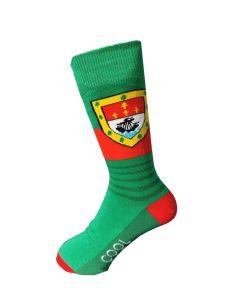 Mayo GAA inspired socks